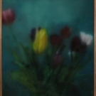 SA_Paintingstomyselfwhenim80_tulips_15